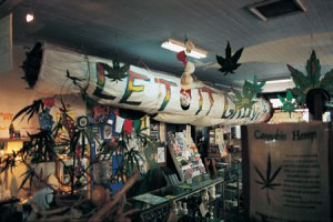 Big_Joint_Nimbin_NSW